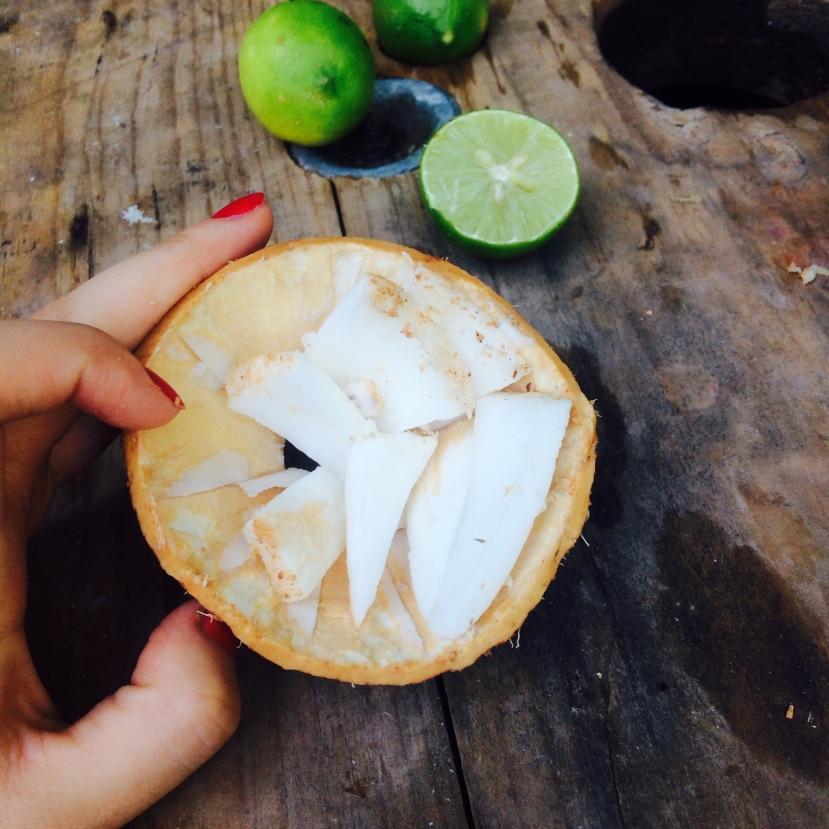 Cocos méxico bateve