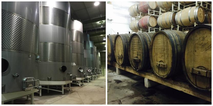 la cetto ruta del vino